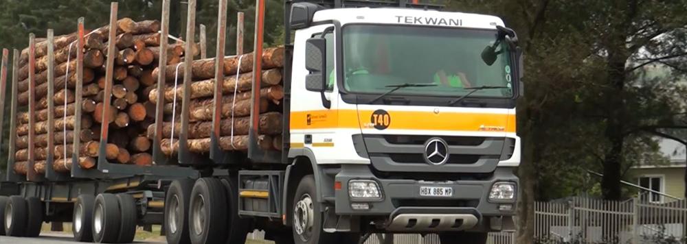 Tekwani truck hauling logs