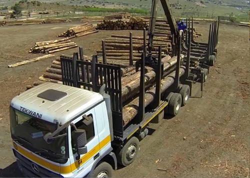 Truck with logs at Tekwani sawmill